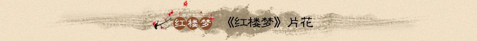 新版红楼梦片花